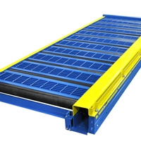 Knurled Roller CDLR Conveyor with Walk Plates