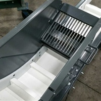 screened-infeed-on-plastic-belt-conveyor